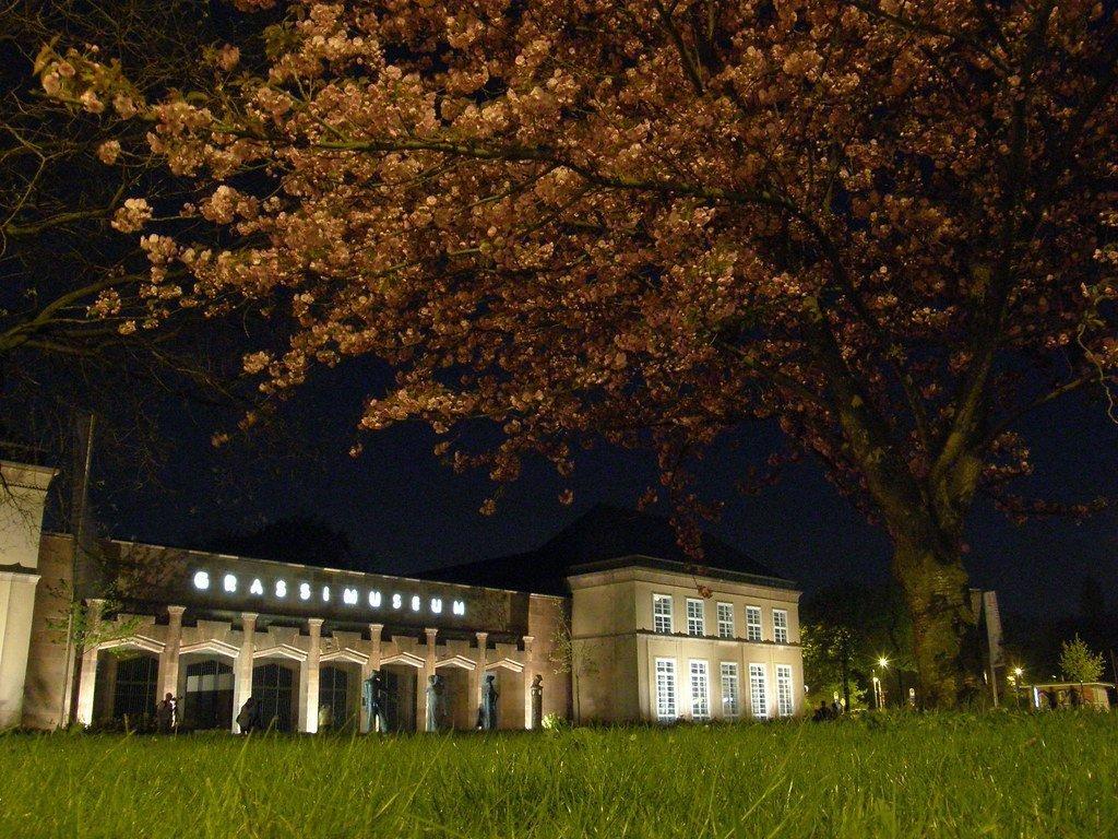 Grassi Museum