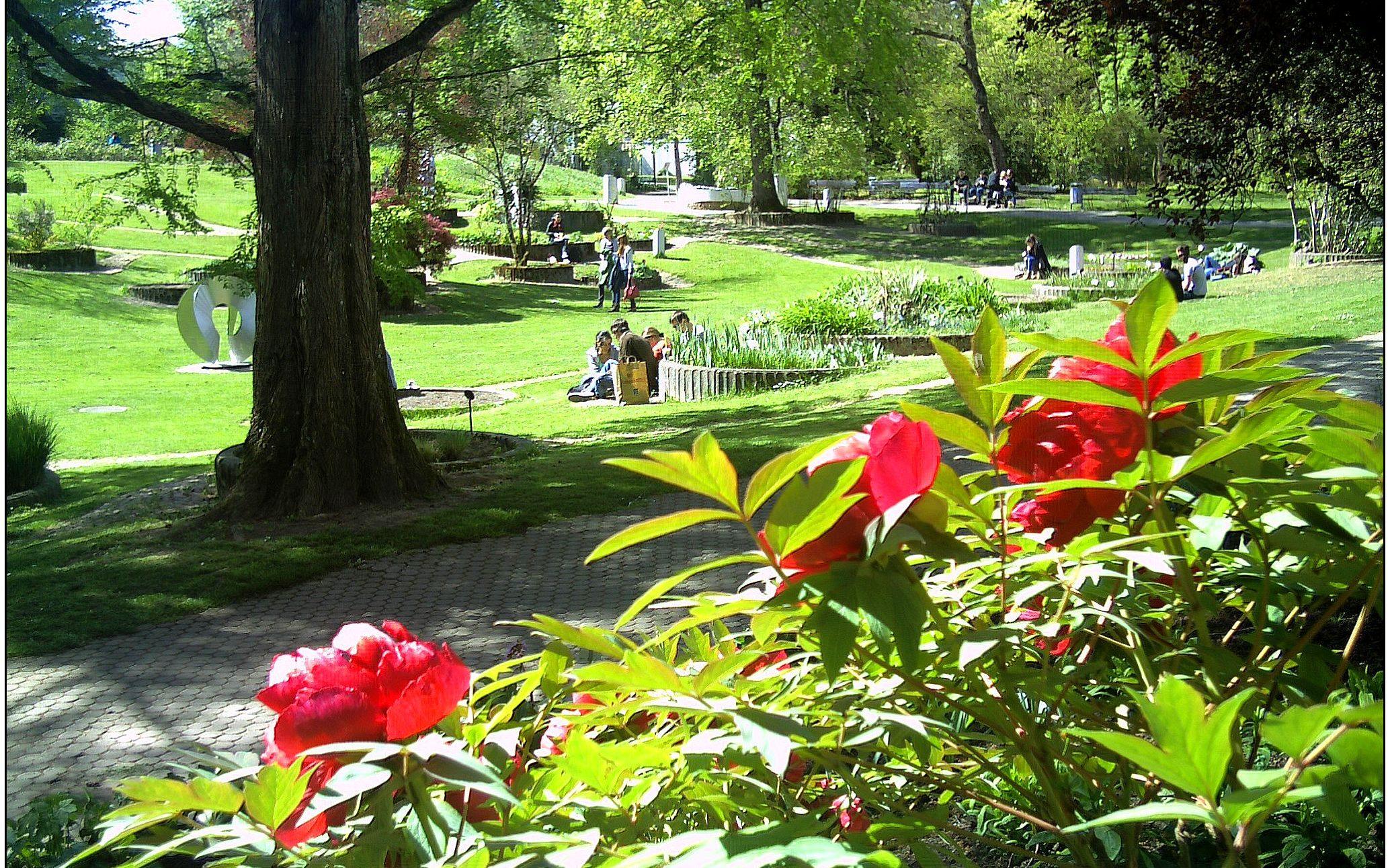 Freiburg Botanical Gaden