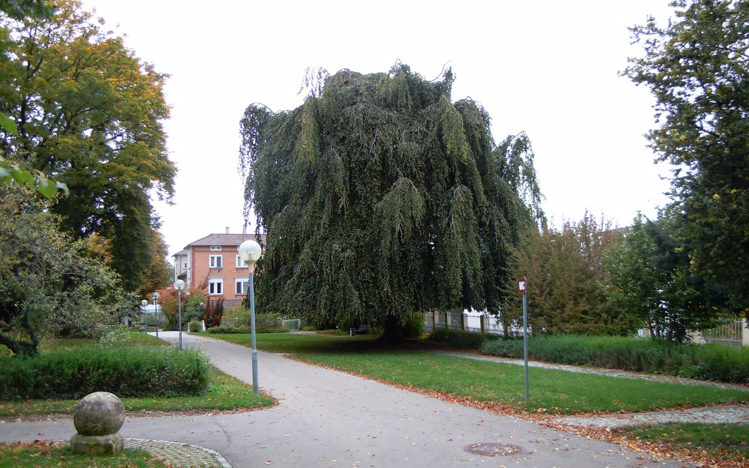 pomologie Reutlingen edited scaled