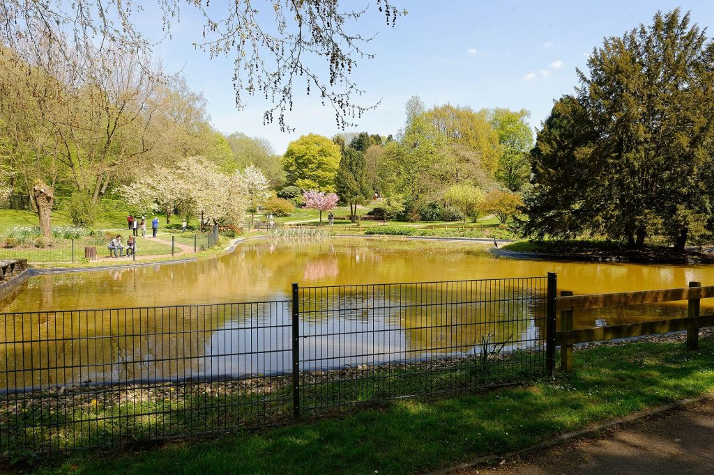 Botanischer Garten Solingen