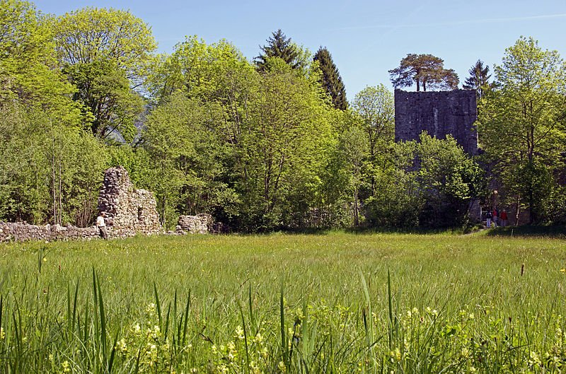 Weissenau Nature Reserve and Castle